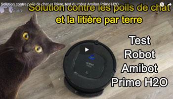 test avis vidéo absolument chats amibot prime h2o